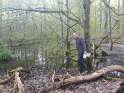Der zweite Teich
